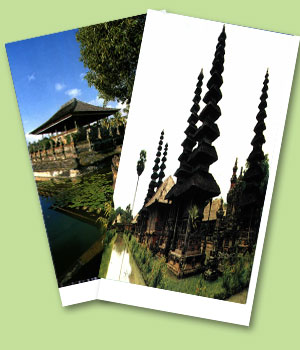 Tour and Travel Services in Bali